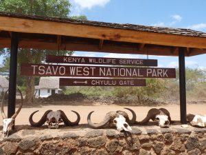 Tsavo Mombasa Safari