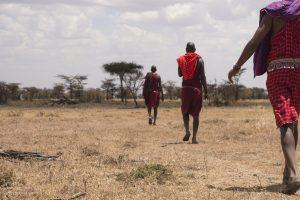 walking safari with masai mara