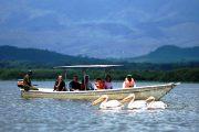 Lake Naivasha Boat Safari