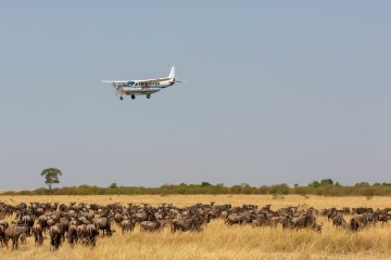 8 days Fly in Kenya Safari