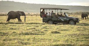 8 days fly in safari Kenya luxury