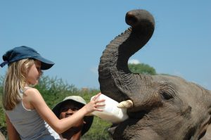 Family Kenya Safari