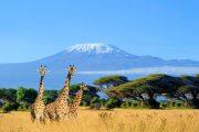 Amboseli National Park Kilimanjaro