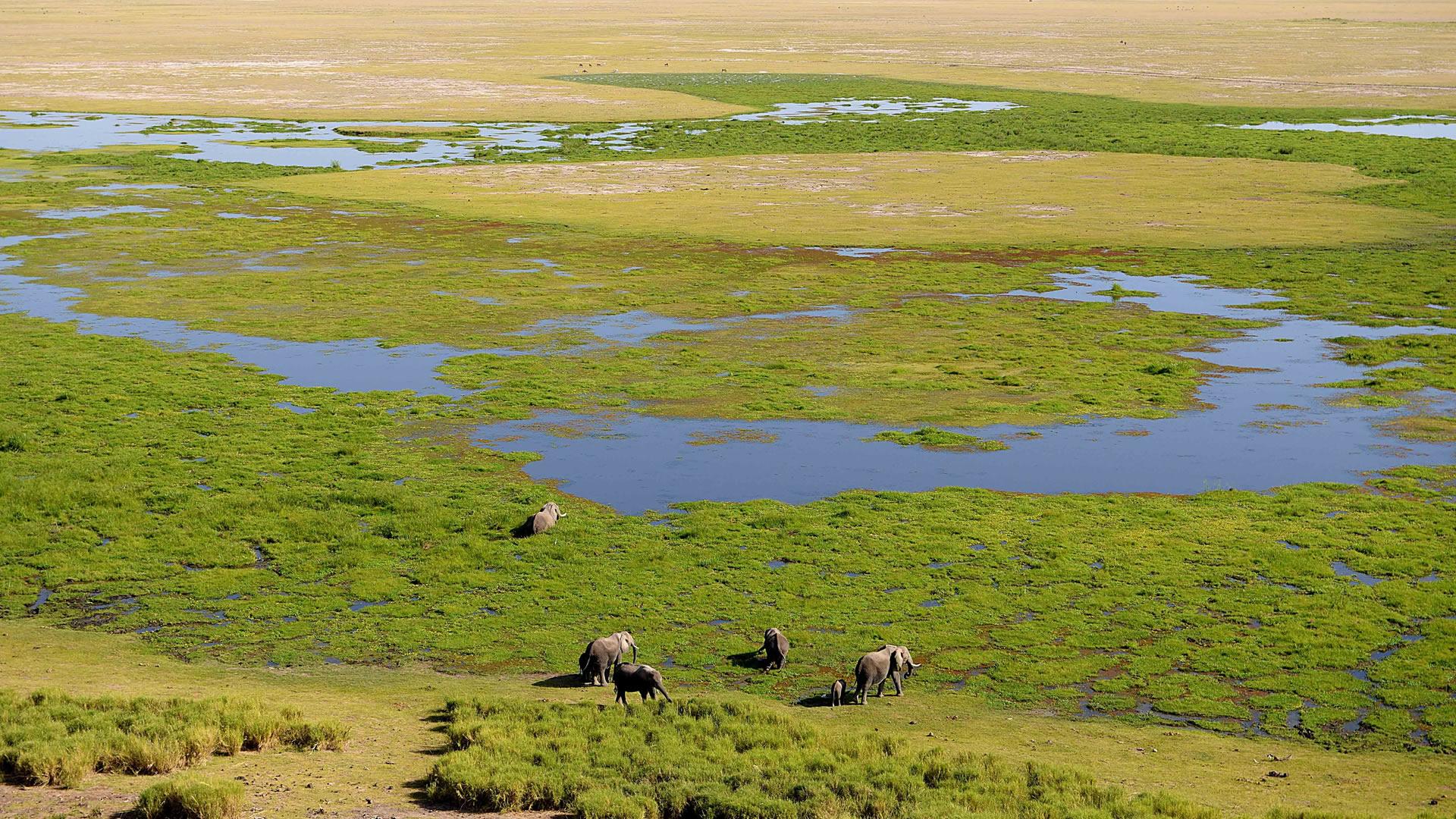 4 Days Kenya Safari to Amboseli & Tsavo West