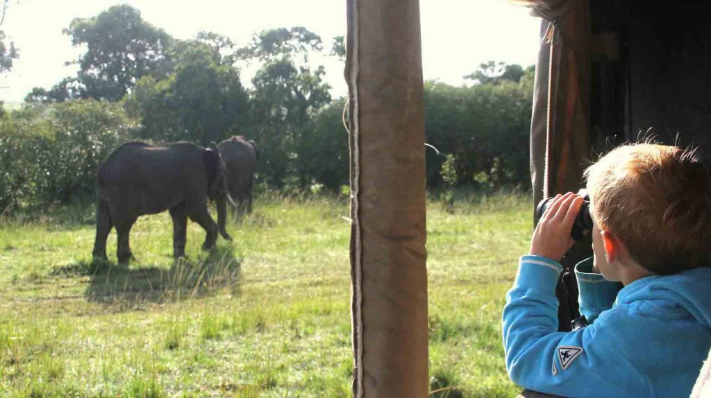 Family safaris in Kenya tips