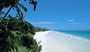 Diani Beach Kenya Stretch